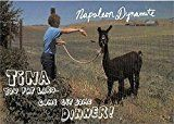 #6: Napoleon Dynamite trading card Jon Heder Tina Llama Fat Lard 2005 #ND11