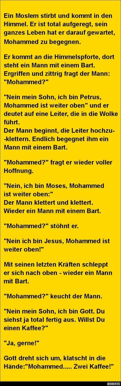 Ein Moslem stirbt und kommt in den Himmel.. | Lustige Bilder, Sprüche, Witze, echt lustig – jan albers