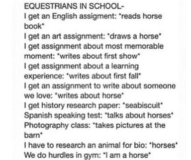 Equestrians in School.  If you don't know the horse girl, you are the horse girl!