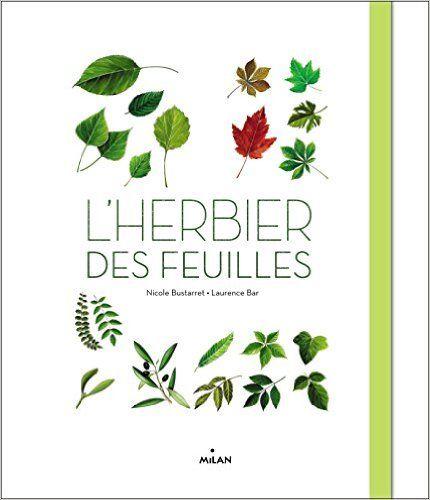Amazon.fr - L HERBIER DES FEUILLES NE - Nicole Bustarret, Laurence Bar - Livres