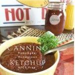 Canning and Preserving - Canning Homemade Sugar-Free Ketchup