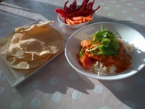 Butter Chicken Gluten Free (Thermomix)