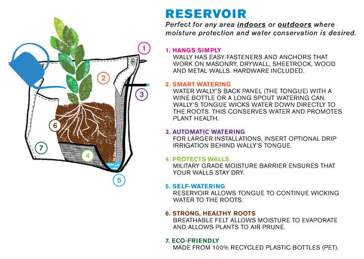 Recover Green Roofs_Woolly Pocket Living Wall