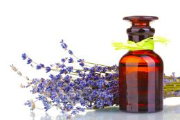 Levandulový olej -výroba návod