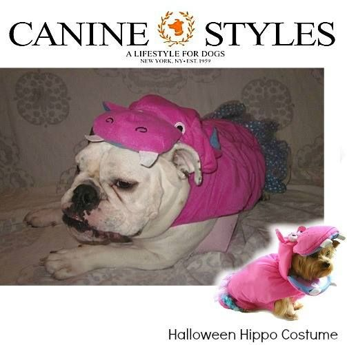 18 best Canine Styles Costumes images on Pinterest | Dog ...