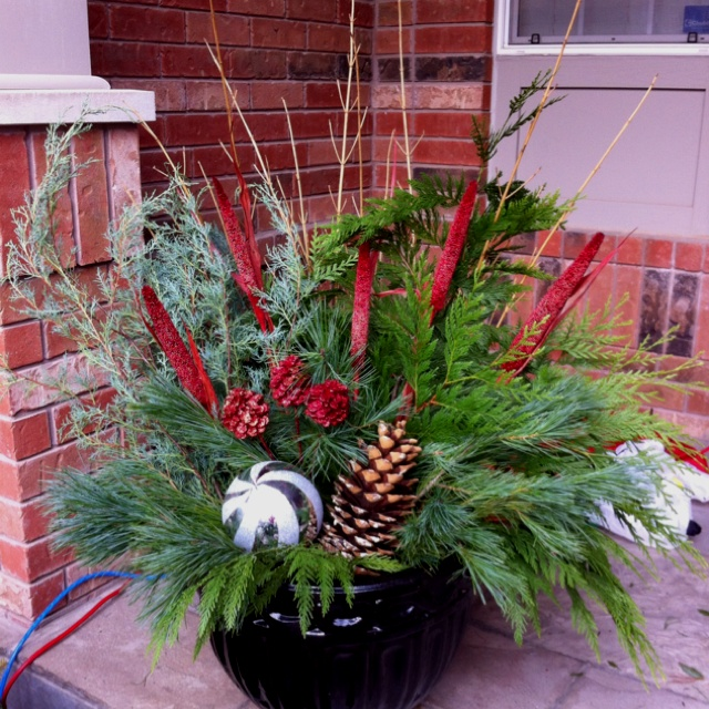 Christmas/Holiday outdoor potted arrangements | Crafts ...