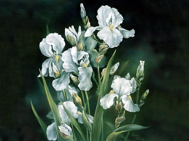 Glynda turley white iris limited edition bedroom redo for Glynda turley painting