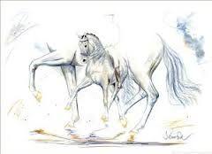 Bildergebnis für pferdebilder