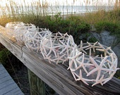 starfish lanterns! would be so gorgeous for a night reception at a beach wedding!
