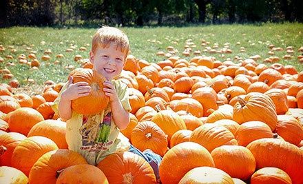 Groupon - KC Pumpkin Patch and Corn Maze Visit for Two or Four (Up to Half Off). Groupon deal price: $10.00