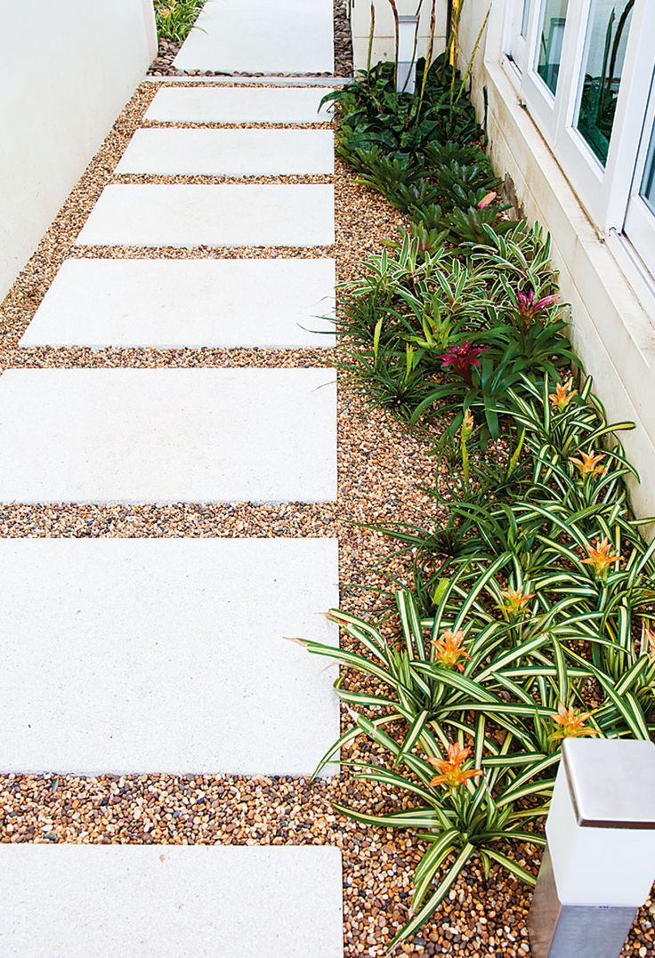 Narrow pathway with tiny plants