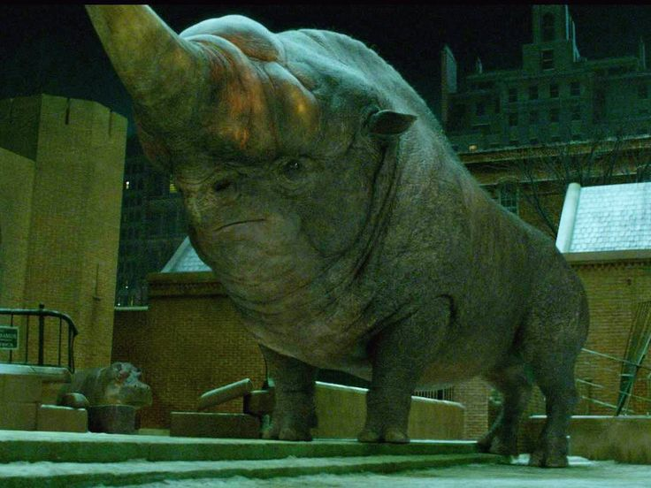 The most dangerous animal that escapes from Scamander's briefcase is the Erumpent. It looks like a giant rhino, its hide repels spells, and it can inject deadly fluid into objects with its horn, which makes them explode.