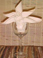 Learn Fancy Napkin Folds - the one on the pic isn't that impressive. lol... hopefully when i get around to checking these out, i'll find more impressive folds to try out ;0)