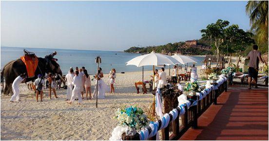 Sandy Bay Bungalows Resort   Koh Phangan, Thailand - Official Site