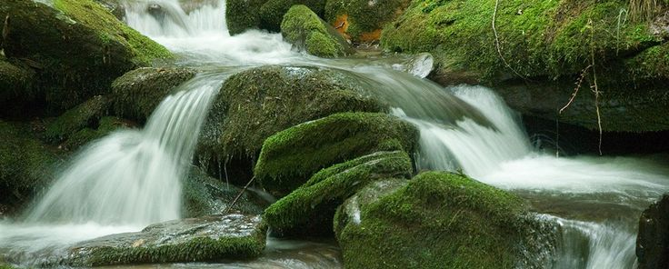 North Carolina Waterfalls - Smoky Mountains - Bryson City Waterfalls - Cherokee