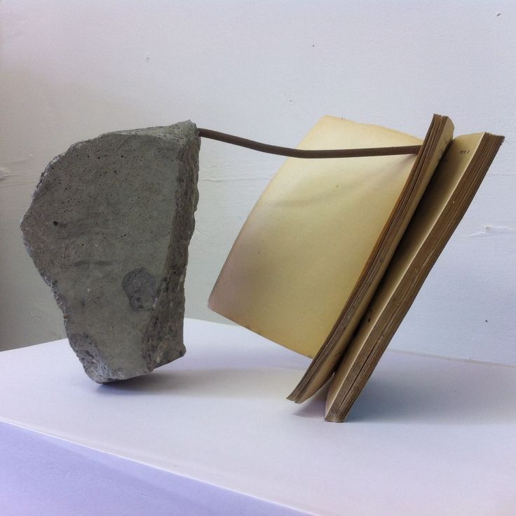 The piece of concrete and metal rubble came out of a NAMA owned unfinished Anglo Irish building on Dublin's quays.  The book is a Pelican published book on intelligence testing which was rescued from the flood which engulfed our lives two years ago.