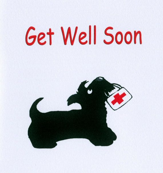 Scottie Dog 'Get Well Soon' Smooth Matt Art Greeting card 14.8 X 14.8 cms 300gsm