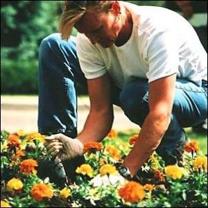 I hire a gardener to attend my large allotment plot near my home. The gardener designs, plants, harvests and maintains a vegetable and flower garden. It produces enough fruit and vegetables for me, my family and some friends over the entire year. The flowers are used in the house as decoration. I sometimes like working alongside the gardener. This costs 38,000 EUR per year.