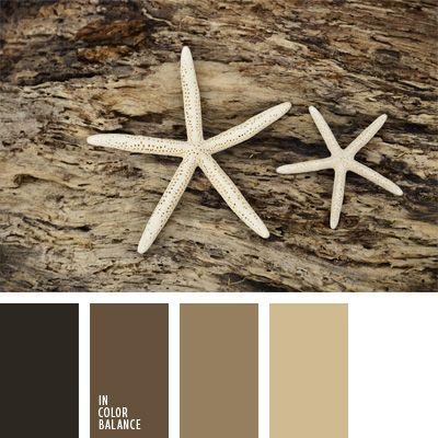 2015, beige, blanco, combinación de colores para decorar interiores, combinaciones de colores, elección del color, paleta de colores monocromática, paleta del color marrón monocromática, selección de colores para el diseño de interiores, tonos fríos de color marrón, tonos