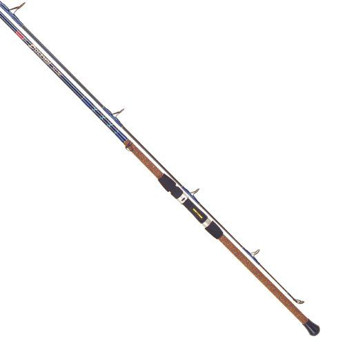25 best ideas about surf fishing rods on pinterest for Surf fishing rod holders