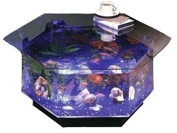 best 25+ 40 gallon aquarium stand ideas on pinterest | fish tank