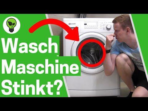 Waschmaschine Stinkt Ultimative Losung Waschmaschine Reinigen