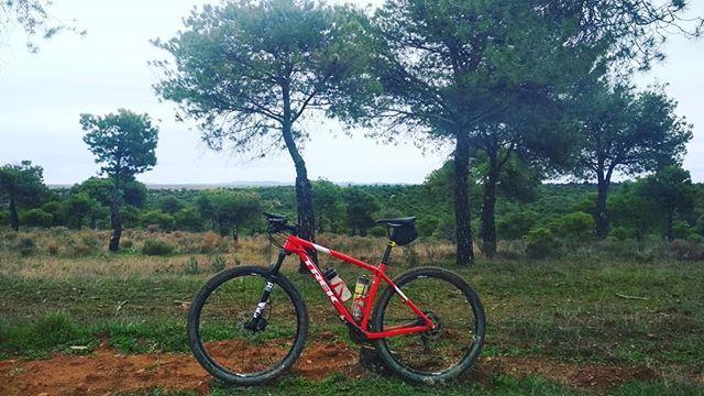 Cuando no nos podemos perder por el mundo con en el equipaje en nuestras alforjas... nos divertimos recorriendo trozitos de él. Berlanga (España). Tal día como hoy. When we can not get lost in the world with our luggage in our saddlebags... we have fun cycling around pieces of it. Berlanga (Spain). Such a day as today. Más en http://ift.tt/2yUD9gy. #cicloviajeros #biketouring #bikepacking #cienmilpedaladas #labicicleta #bicicleta #bike #bicycle #velo #fahrrad #viajar #travel #trip…