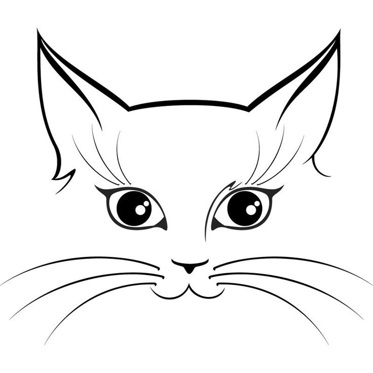 Line Drawing Of A Cat Face : Best images about cat on pinterest