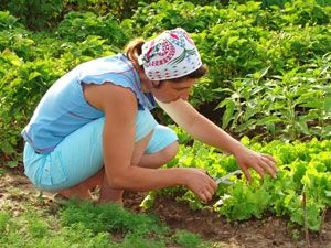 In Her Boots: Sustainable Farming for Women, by Women (31:16 She considers a field and buys it; From her profits she plants a vineyard.)