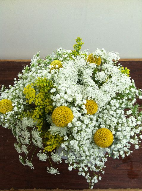 Bridesmaid bouquet - babies breath, solidago, queen anne's lace, billy balls and dusty miller | Flickr - Photo Sharing!