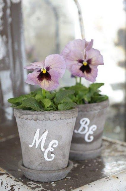 : Shower Ideas, Garden Ideas, Vintage Chic, Gardening Ideas, Flowers Plants Gardening, Violets Pansies
