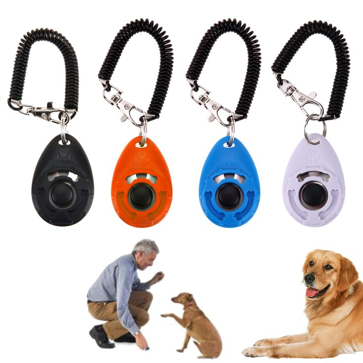 1pc Universal Animal Pet Trainer Pet Dog Training Clicker Adjustable Sound Key Chain Dog Clicker Dog Trainings Products Supplies #Affiliate