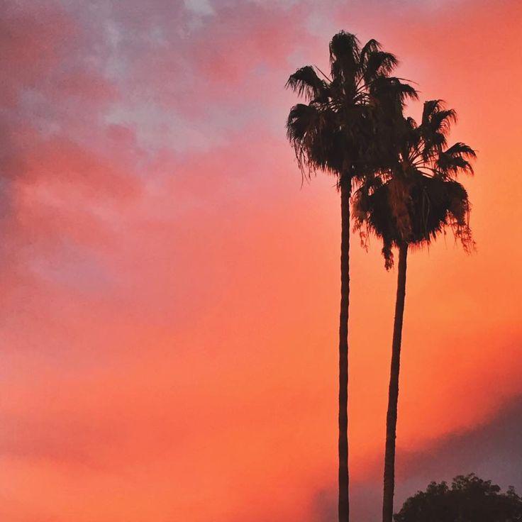 Melrose Avenue Los Angeles, California in Los Angeles, CA. www.sabrinascloset.com