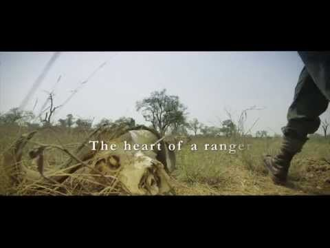 #heartofaranger #poachingmustfall An emotional story about how a Ranger feels about protecting our Rhino and heritage meanderings.co.za/heart-of-a-ranger