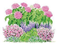 Scène tonique & harmonieuse - un jardin qui vous ressemble