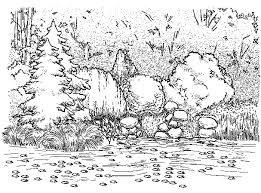 Картинки по запросу Пейзажная группа растений
