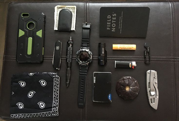 Fell prepared.  submitted by Tim Reichelt  Field Notes Pitch Black Edition  Burts Bees Beeswax Lip Balm  Pry Bar  Bic Mini Lighter  Gerber Folding  Change purse  The Ridge Wallet  Olight S1A Baton  Armitron large face all black watch  Money Clip  Uzi UZI-TACPEN2-BK Defender Aircraft Aluminum Tactical Pen with Glassbreaker Black  Swiss Army Pocket Knife Tinker  Iphone 6s plus  Black Bandana  Seems like lots of stuff however not uncommon to use most of it daily. You simply never know!