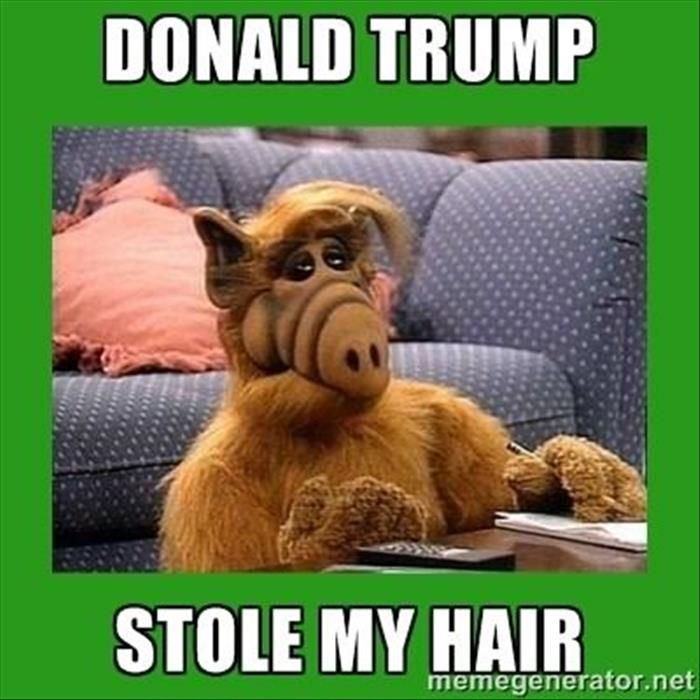Best Trump Funny Ideas On Pinterest Donald Trump Funny - 16 hilarious pictures proving office humor best humor