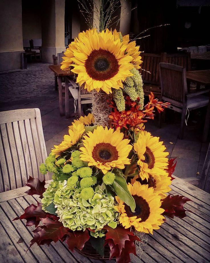 "12 aprecieri, 1 comentarii - Floraria Dorothy's (@florariadorothys) pe Instagram: ""Happy Birthday!! #sunflower #cluj #clujlife #clujnapoca #lifeincluj #viataincluj #floricluj…"""