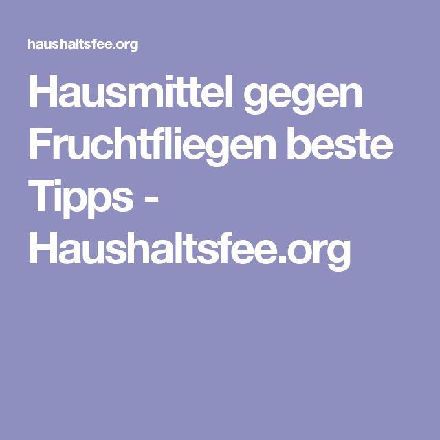 Hausmittel gegen Fruchtfliegen beste Tipps - Haushaltsfee.org
