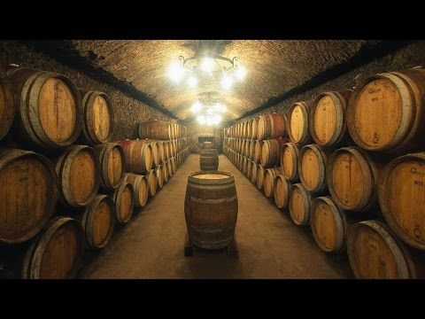 TUSCANY - Where art and good wine are born Tuscany and its cities #raiexpo #youritaly #tuscany #italy #expo2015 #experience #visit #discover #culture #food #history #art #nature
