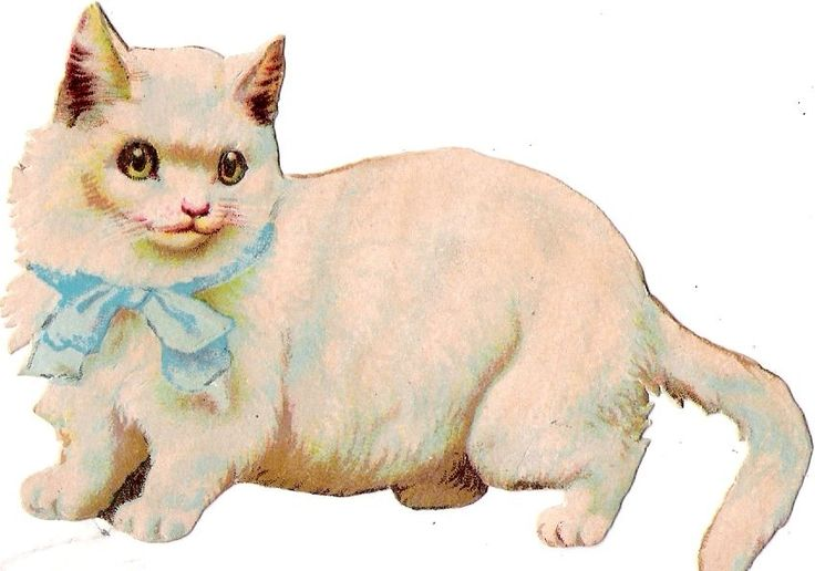 Oblaten Glanzbild scrap die cut chromo Katze cat kitten ribbon Masche bow