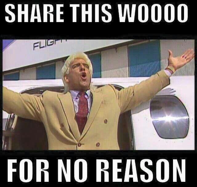 c6411f6190b130821f2d4912ca874985 wrestling memes ric flair 11 best ric flair woooooo! images on pinterest ric flair