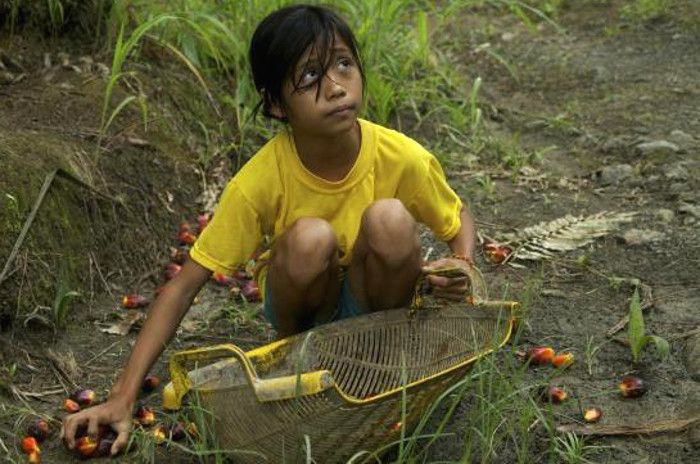 How Can We Stop Child Labor Problems Young People Essay