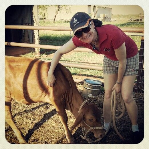 I absolutely love playing with the poddy calves!  www.wealth-love-pace-believe.com #poddycalf #calves #thecalfwhisperer