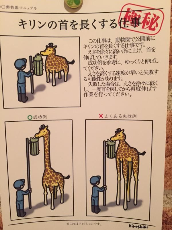 Top secret mission of the zoo is ' work' lengthening the neck of the short giraffe of 'neck' .
