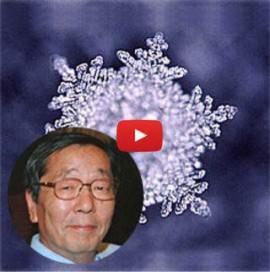 O poder das palavras e da intenção explicado cientificamente por Masaru Emoto