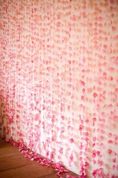 Pink rose petal curtain