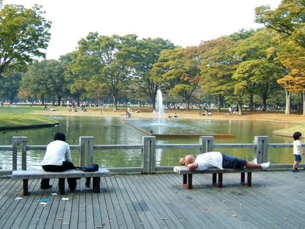 Lago principal do Parque Yoyogi (Foto: Creative Commons)