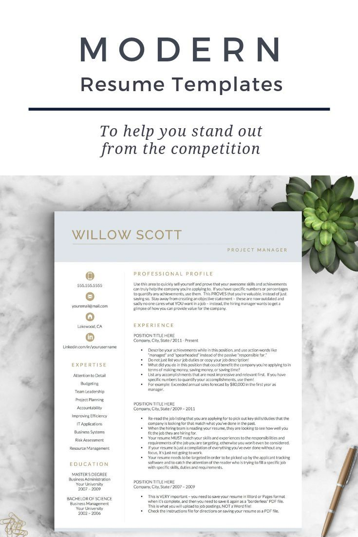 resume template for word and pages modern cv template resume